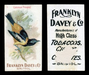 Set of 50 Franklyn Davey & Co 'Birds' cigarette cards, blog.tooveys.com