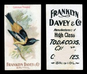 Set of 50 Franklyn Davey & Co 'Birds' cigarette cards, blog.tooveys.com