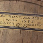 Sedlacek titled label verso