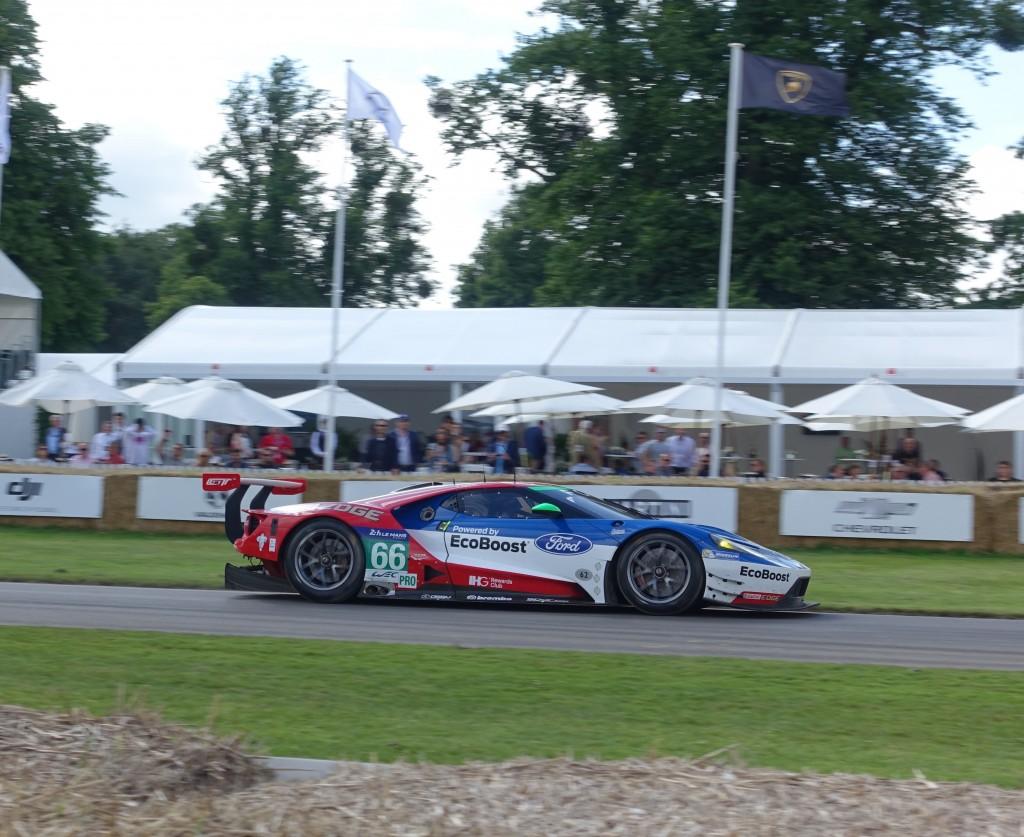 Marino Franchitti driving the Ford GTE LM