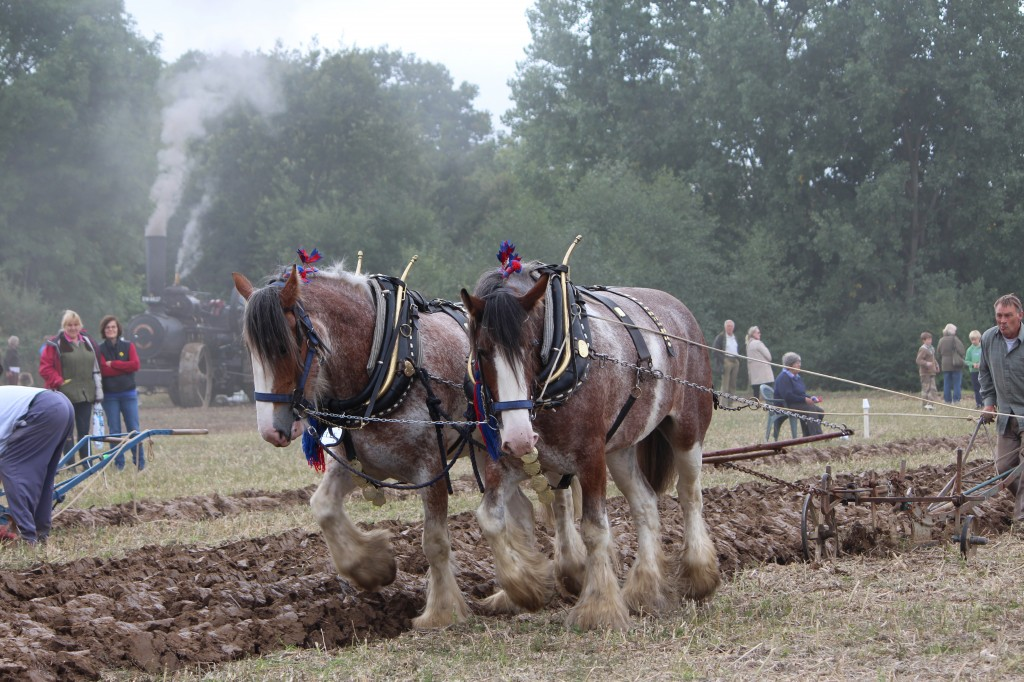 The Plough Match