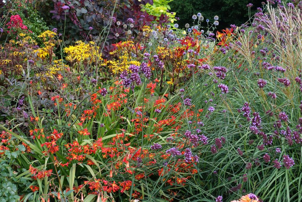 The vibrant Mid-Summer Border at Borde Hill Garden