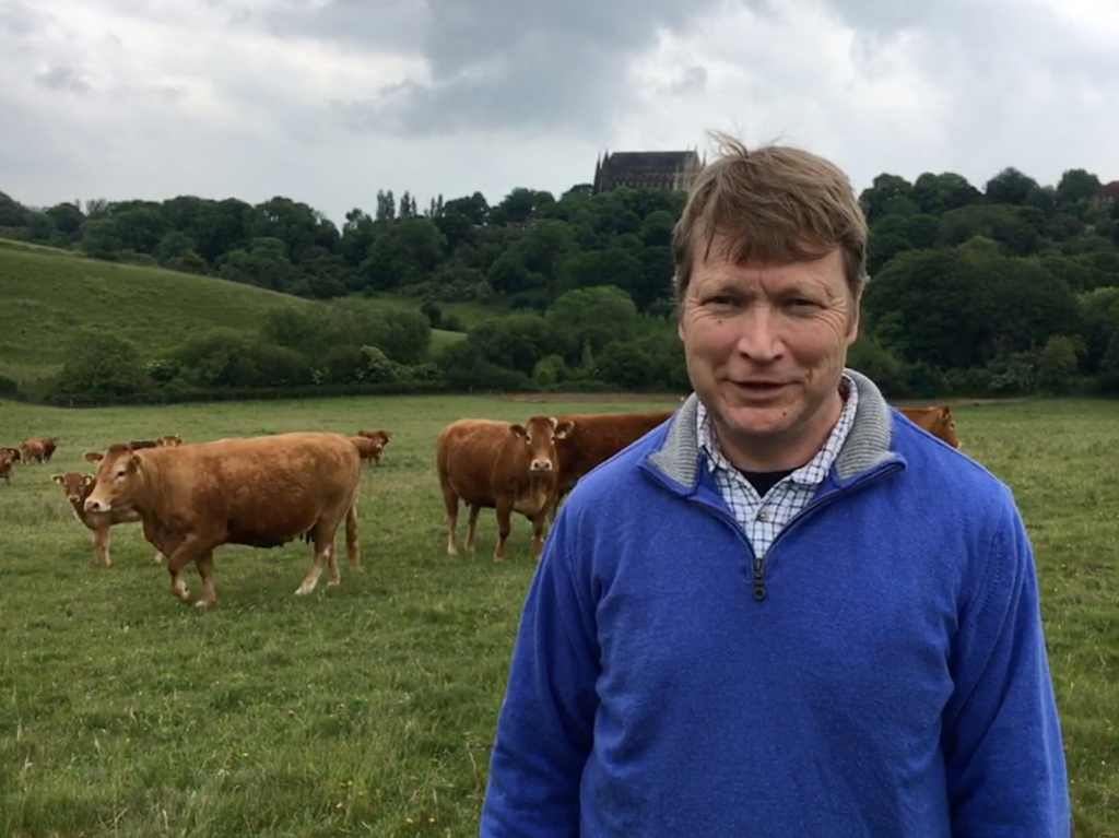 Hugh Passmore and his herd of Limousin cattle